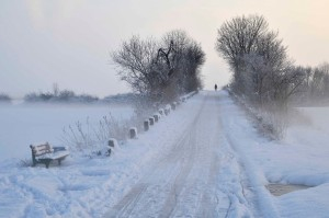 Winter amMeßdorfer Feld
